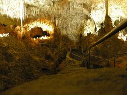 Carlsbad Caverns rail pic
