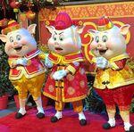 Three Pigs Chinese New Year