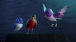 Bird Sofia and her bird friends