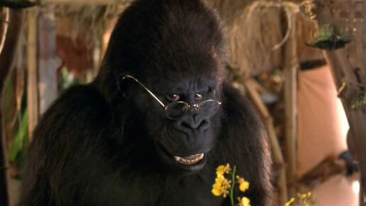 George Of The Jungle Ape With Glasses