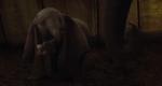 Dumbo852