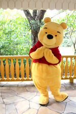 c876e0d60669 Winnie the Pooh Costumes Through the Years