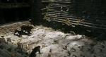 The Jungle Book 2016 (film) 18