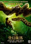 Jungle Book - Mowgli and Kaa - Poster