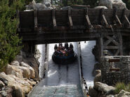 Grizzly River Run 9