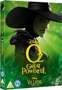 Slipcover Wicked Witch