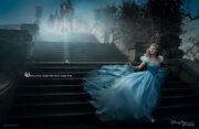 Disney Dream Portrait Series - Cinderella - Where Every Cinderella Story Comes True