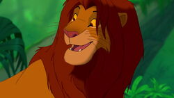 Simba grown up