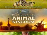 The Magic of Disney's Animal Kingdom