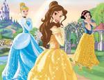 Disney-Princess-disney-princess-34346332-500-386