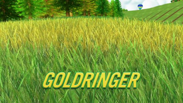 File:Goldringer.png