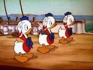 Huey-Dewey-Louie-Sea Scouts