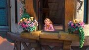 Rapunzelventana