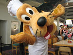 Character-Breakfasts-Pluto-At-Chef-Mickeys