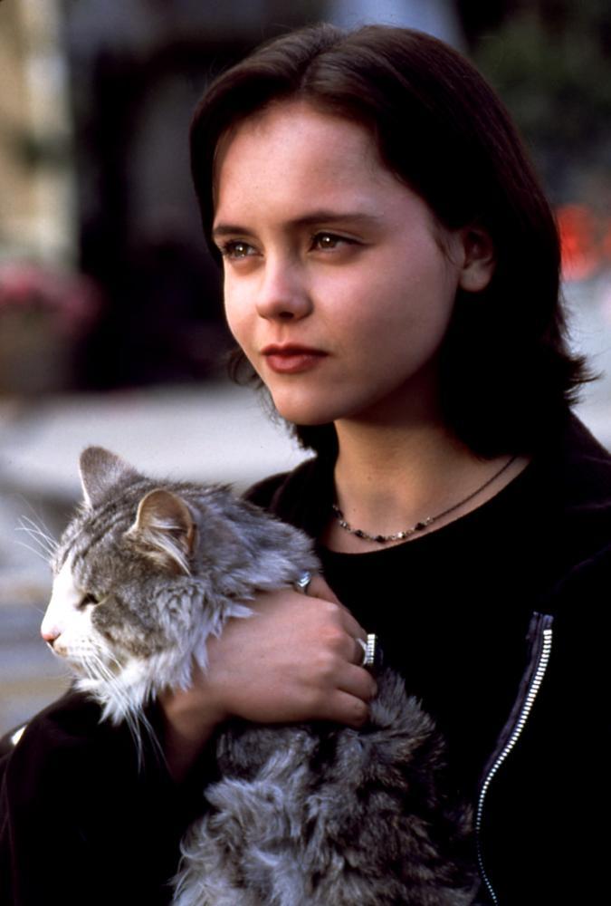 Dewey The Cat Movie