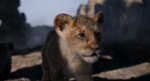 The Lion King (2019 film) (3)