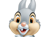 Thumper/Gallery