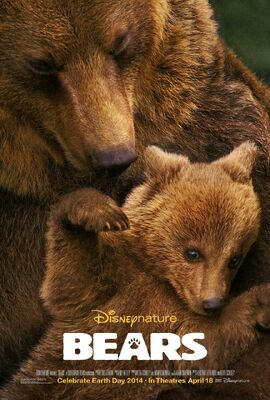 Bears 2014 film