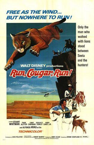 File:Run, Cougar Run.jpg