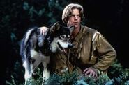 White fang 2 myth of the white wolf 1994 454x302 15404