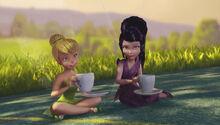 Видия Динь чай