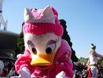 Daisy duck at Tokyo Disneyland