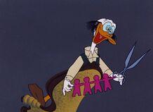 Donalds diary 11