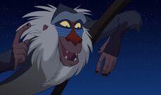 Lionking3-208