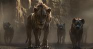 2019 Scar & Hyena's