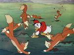 1938-chasse-renard-donald-12