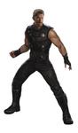Infinity War Fathead 25