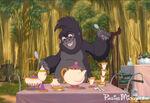 Tarzan-terkpottschip