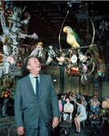 Walt-Disney-in-Tiki-Room