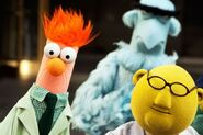 552px-TheMuppets-2635077397
