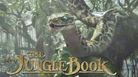 THE JUNGLE BOOK - Das ist Kaa - Ab 14