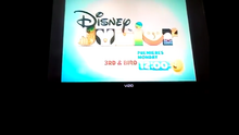 3rd & Bird Disney Junior Logo