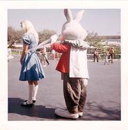 Disneyland alice and rabbit apron strings photograph 640