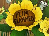 Flimflammed