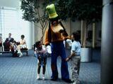 Goofy's Field Trips: Planes