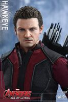 Hawkeye AOU Hot Toys 02