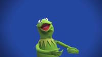 Muppets-com27
