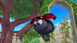 Strawberry the ladybug