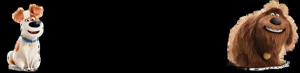 AmazonAlexa99Message-Wall4
