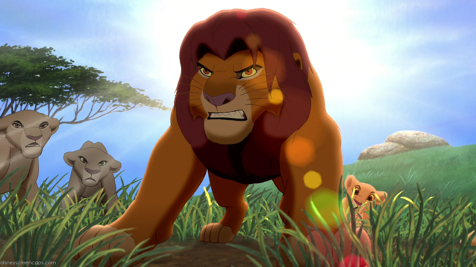 Lion2-disneyscreencaps.com-1482.jpg