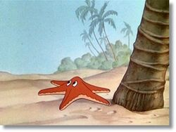 Unnamedstarfish