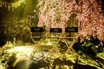 Maleficent 2 Cast Set Chairs