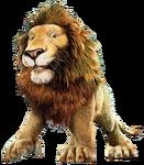 Samson the Lion