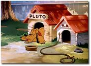 40705-Pluto