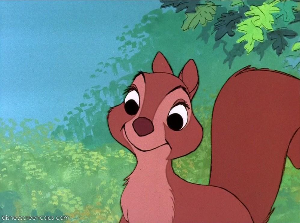 girl squirrel disney wiki fandom powered by wikia