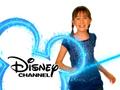 75. Allisyn Ashley Arm ID (January 1, 2009-June 30, 2010)